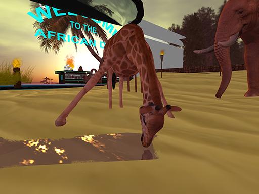 NC Af giraffe